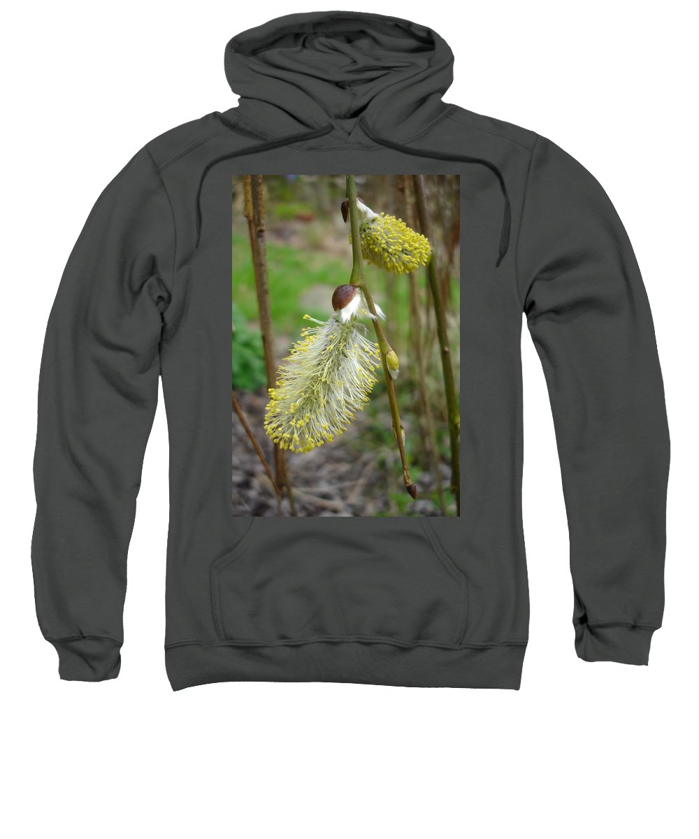 Flora Sweatshirt featuring the photograph Pussy Willow by Susan Baker