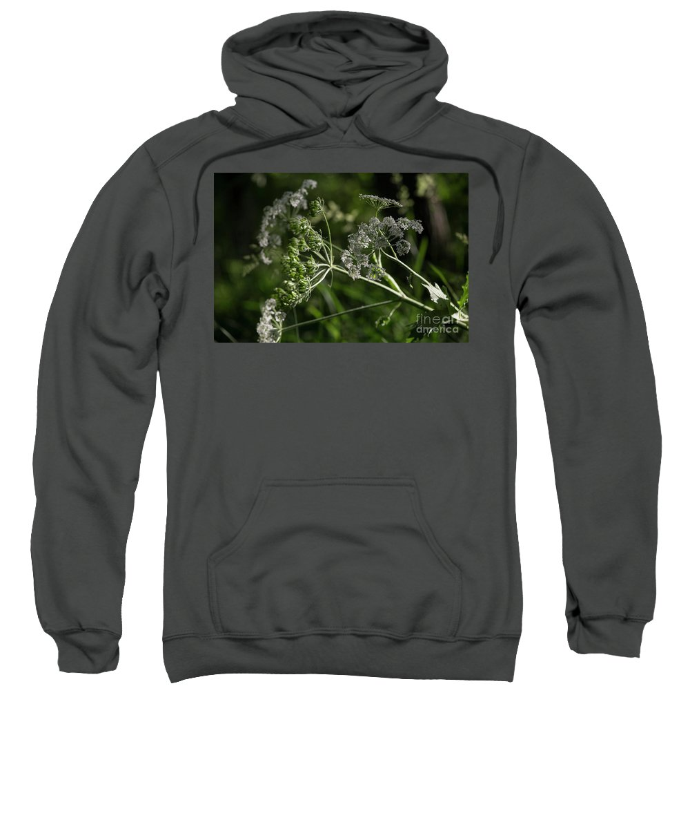 Forest Sweatshirt featuring the photograph Queen Anne Lace In The Wind by David Bearden