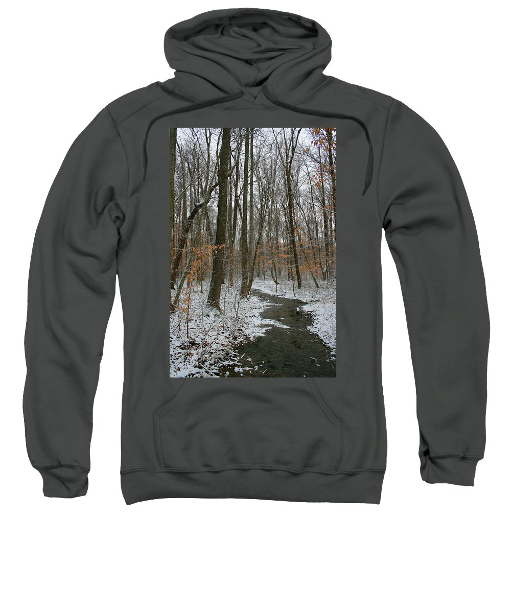 Forest Woods Water Winter Tree Snow Cold Season Nature Sweatshirt featuring the photograph Quite Path by Andrei Shliakhau