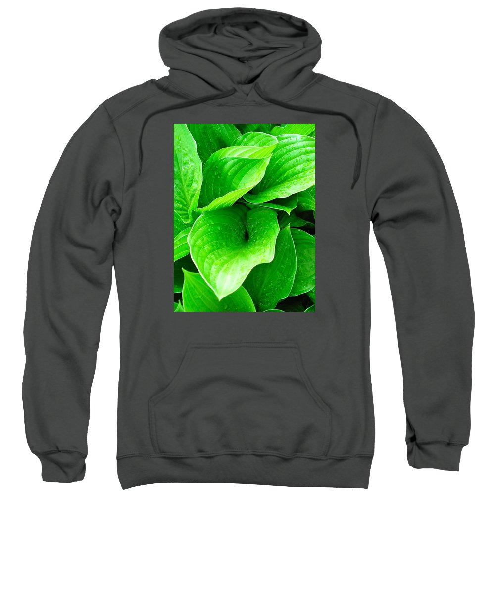 Flowers Sweatshirt featuring the photograph Rain Kissed 2 by Nelson F Martinez