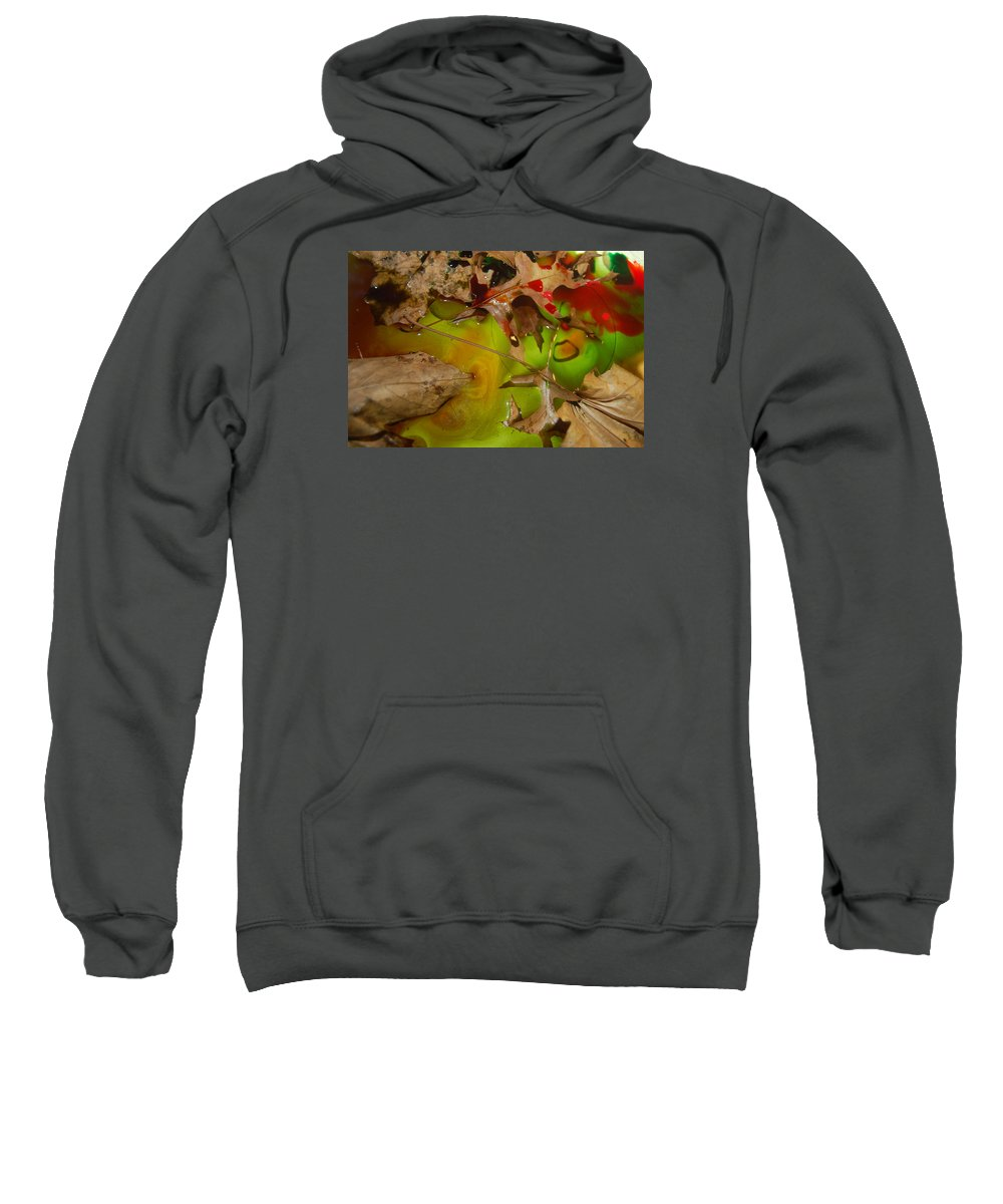 Abstract Sweatshirt featuring the photograph Rainbow Leaves 3 by Alwyn Glasgow