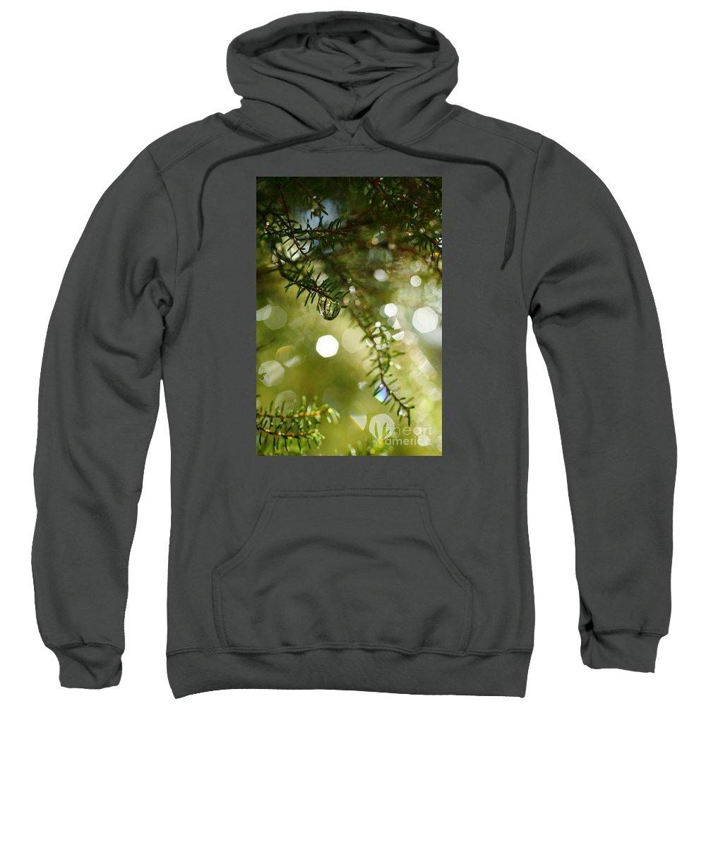 Dew Sweatshirt featuring the photograph Raindrops by Gaspar Avila