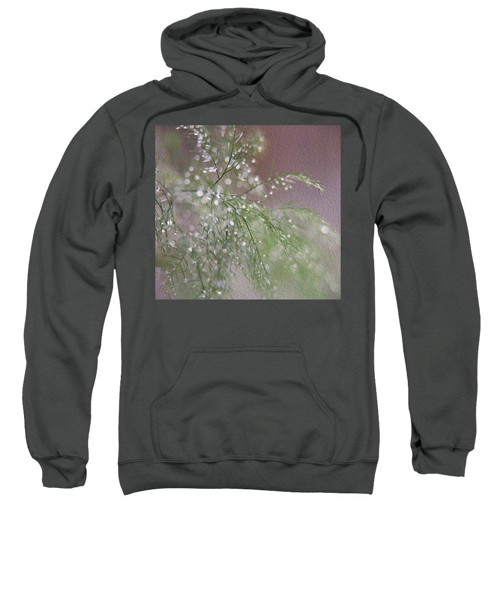 Fern Sweatshirt featuring the photograph Raindrops On Fern by Cathryn Hardwick