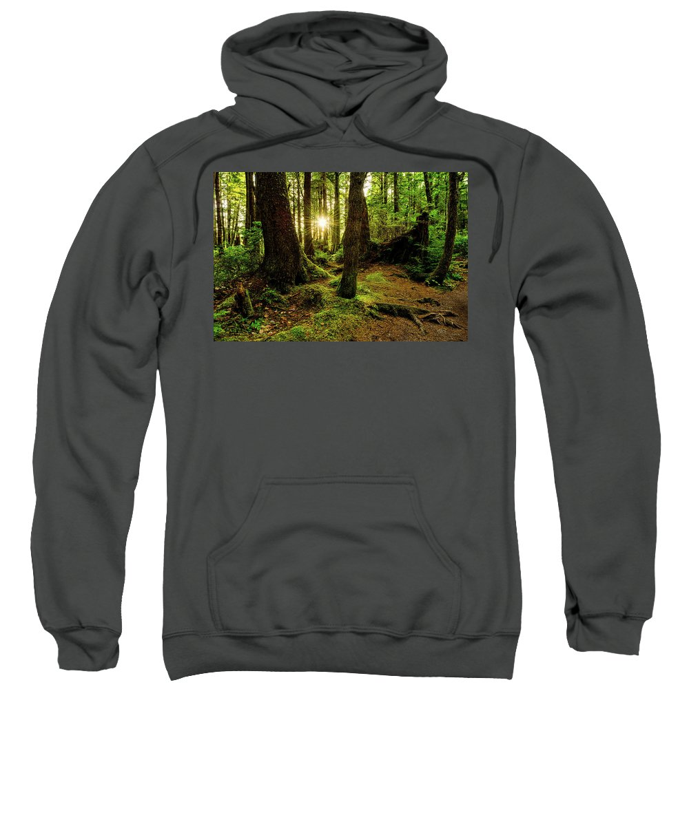 Olympic National Park Hooded Sweatshirts T-Shirts