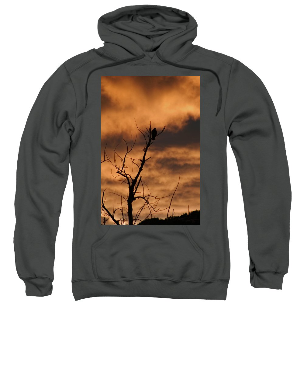 Silhouette Sweatshirt featuring the photograph Raptor Silhouette by Ben Zell