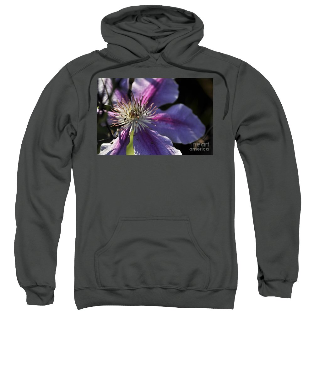 Clay Sweatshirt featuring the photograph Reach For The Sun by Clayton Bruster