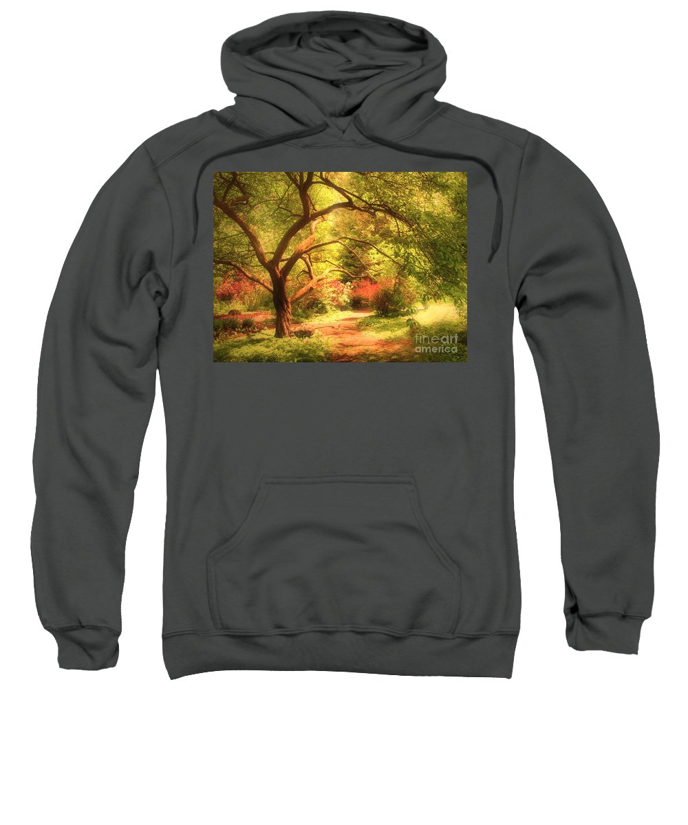 Tree Sweatshirt featuring the photograph Reaching For The Light by Tara Turner