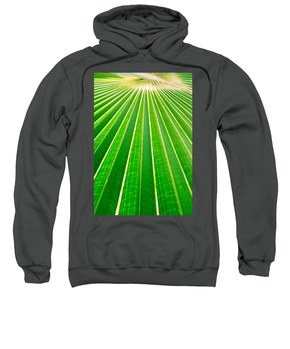 Nature Sweatshirt featuring the photograph Reaching Out by Holly Kempe