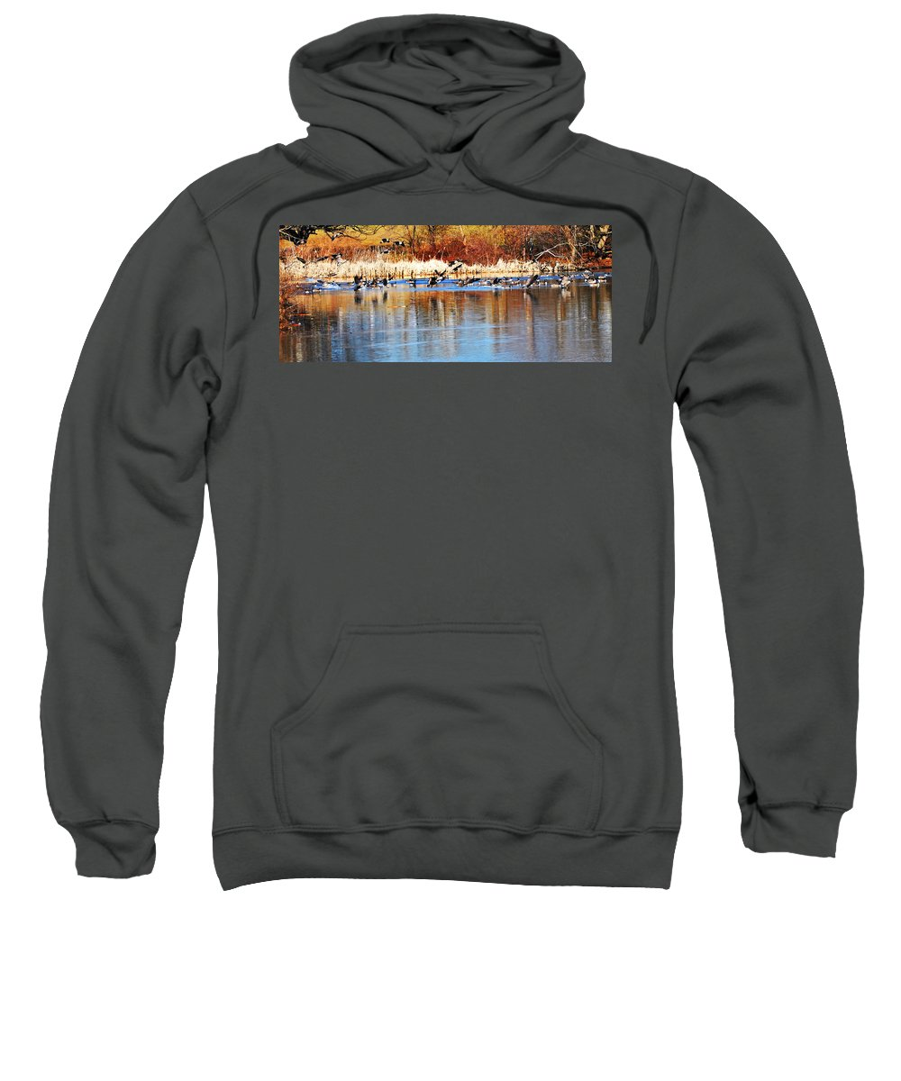 Birds Sweatshirt featuring the photograph Ready Get Set Go by Bill Cannon