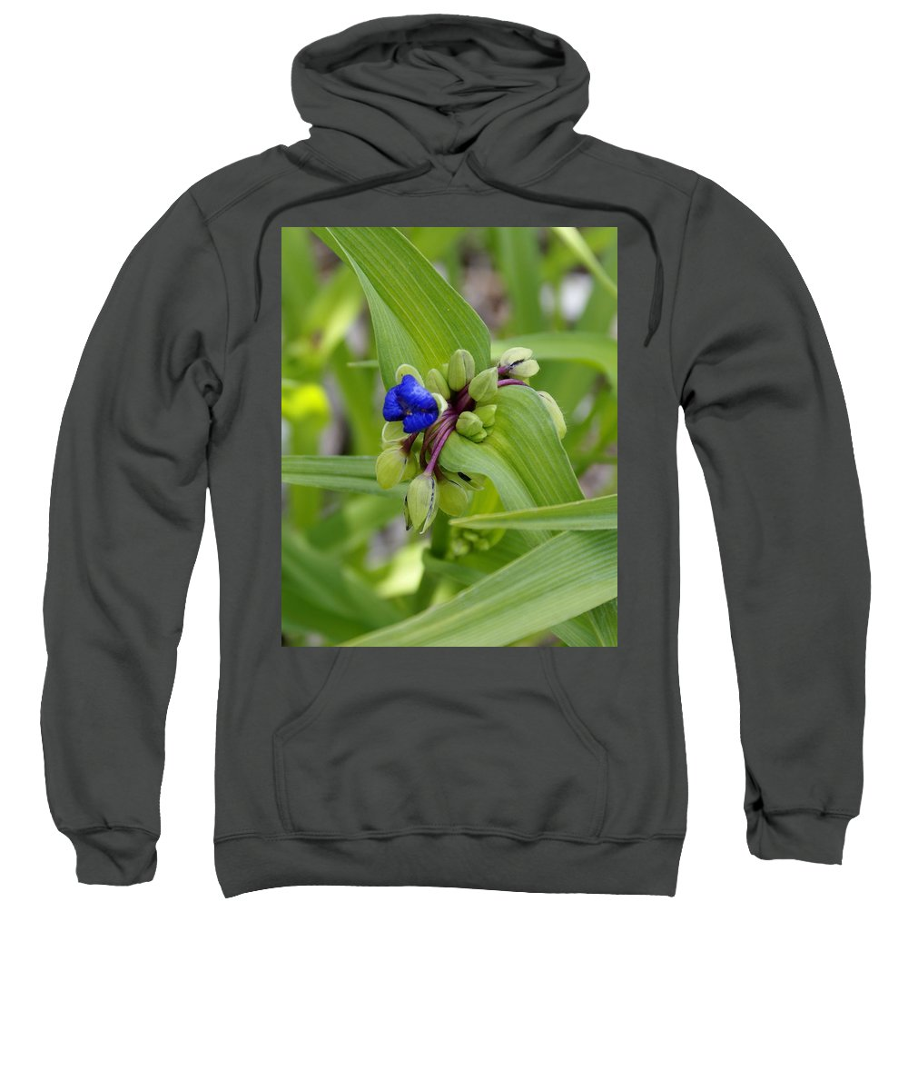 Flowers Sweatshirt featuring the photograph Ready To Rise by Ben Upham III