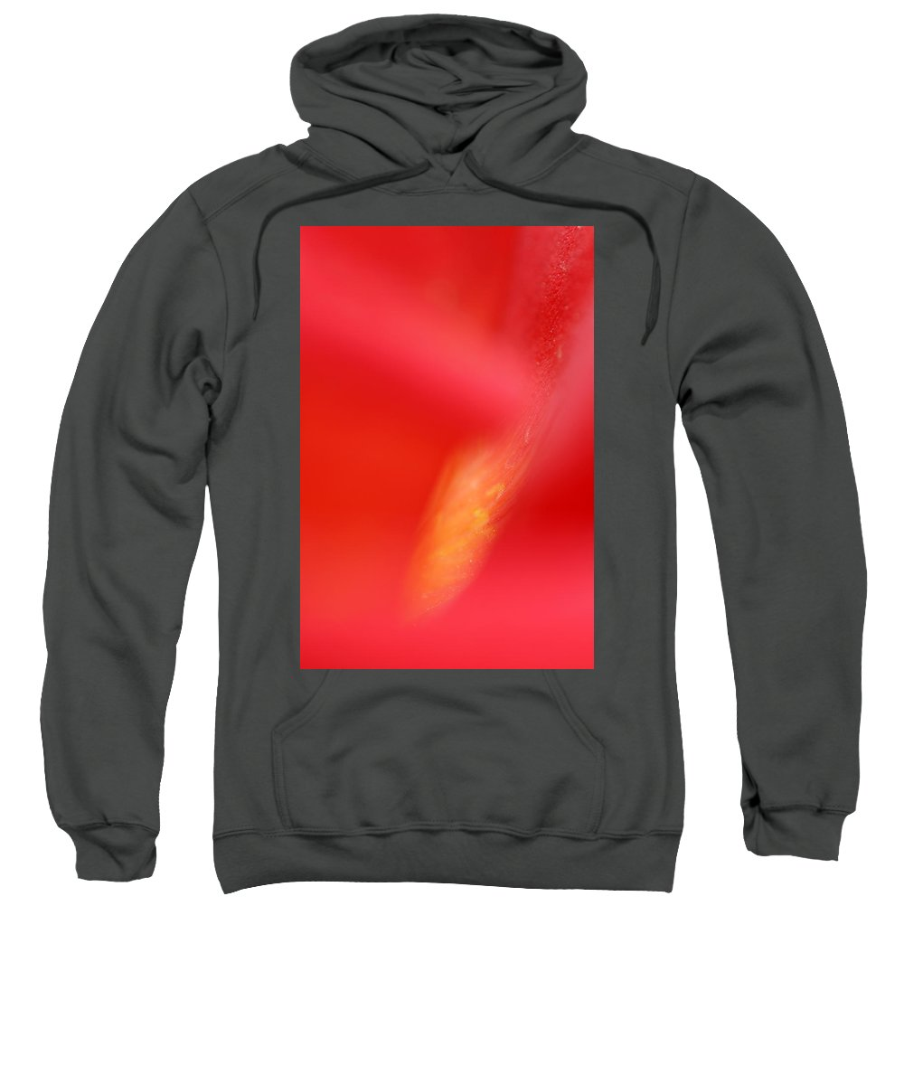 Red Sweatshirt featuring the photograph Red - Yellow Blossom 1 by Dubi Roman