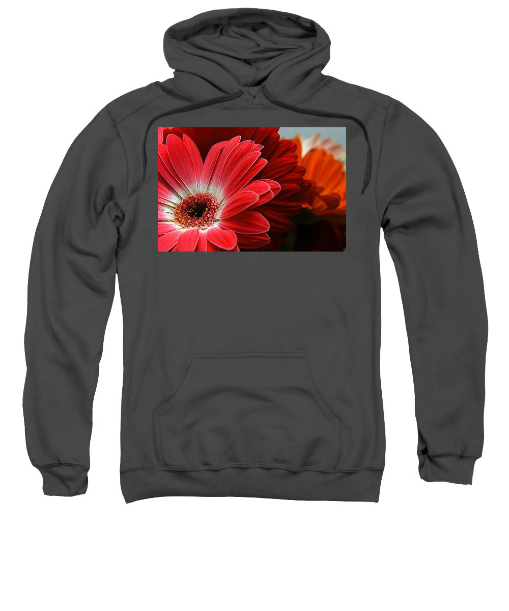 Clay Sweatshirt featuring the photograph Red And Orange Florals by Clayton Bruster