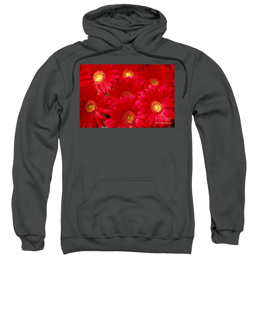 Allan Seiden Sweatshirt featuring the photograph Red Daisies by Allan Seiden - Printscapes