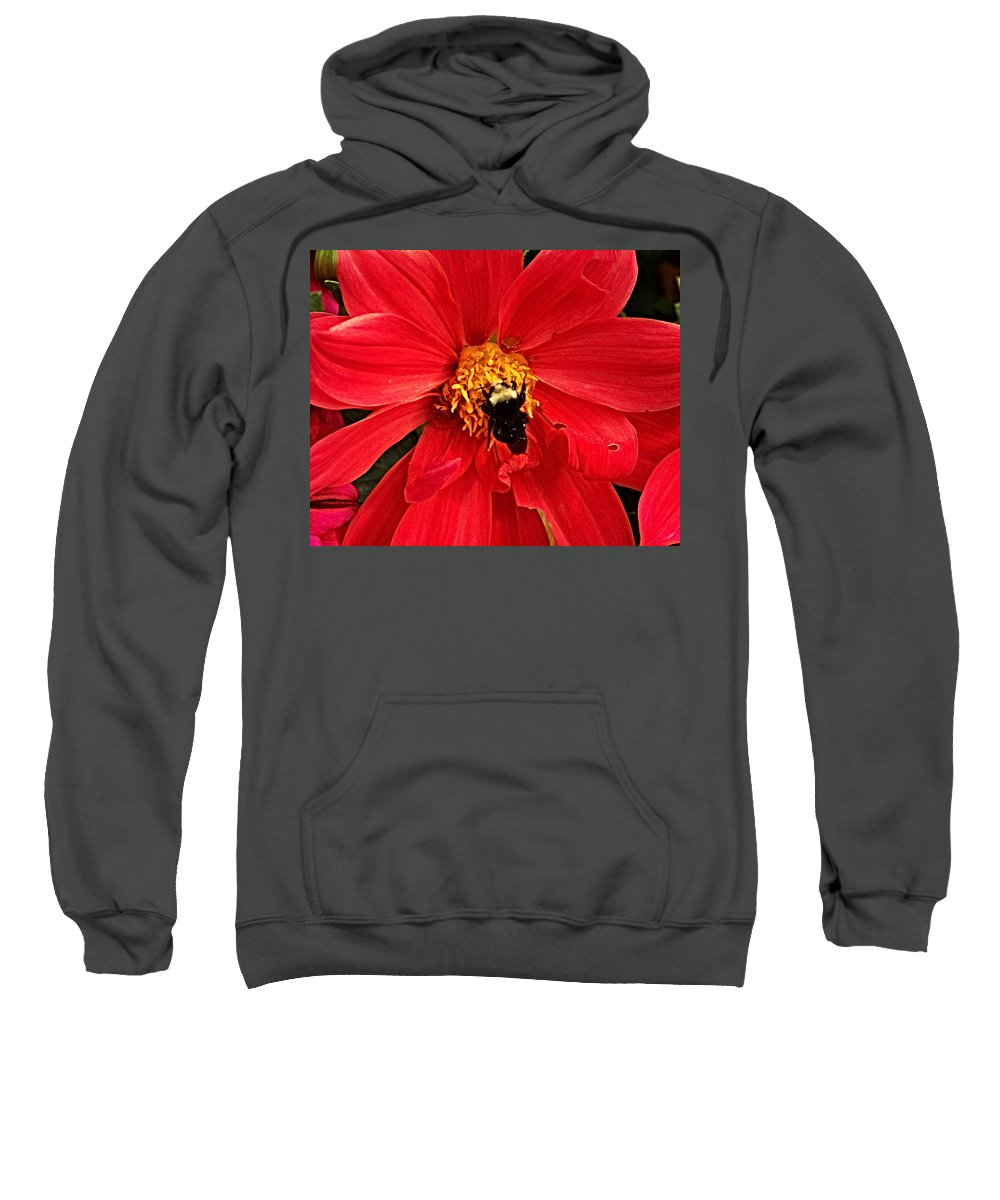 Flower Sweatshirt featuring the photograph Red Flower And Bee by Anthony Jones