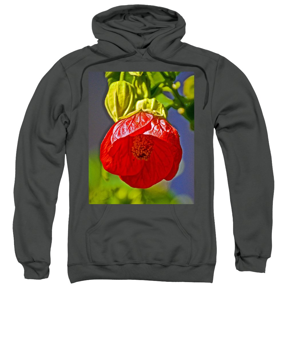 Red Flower At Pilgrim Place In Claremont Sweatshirt featuring the photograph Red Flower At Pilgrim Place In Claremont-california by Ruth Hager