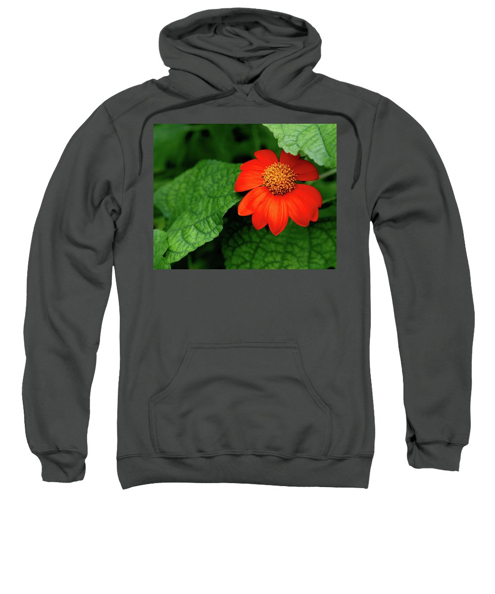 Flower Sweatshirt featuring the photograph Red Flower by Charlie Grindrod
