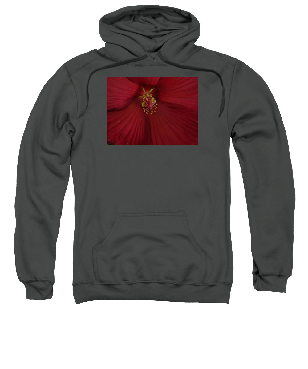 Red Sweatshirt featuring the photograph Red Passion by Mary Halpin