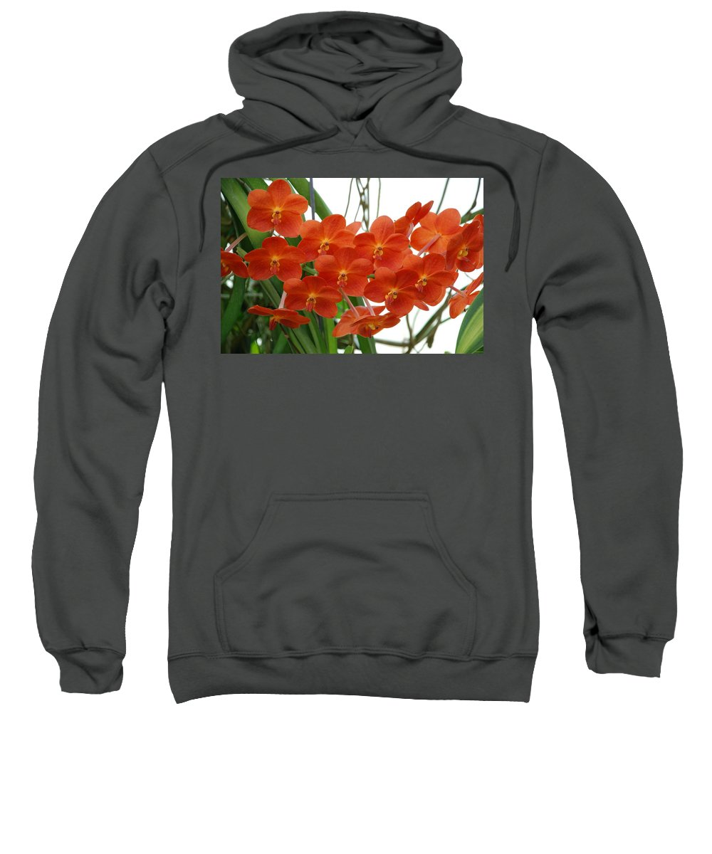 Macro Sweatshirt featuring the photograph Red Flowers by Rob Hans