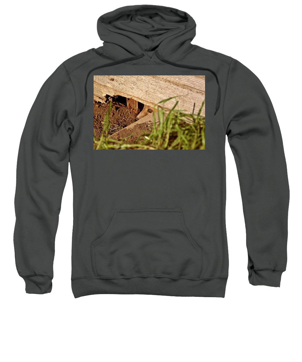 Red Fox Sweatshirt featuring the digital art Red Fox Kit Peaking Out From Den Under Old Granary by Mark Duffy