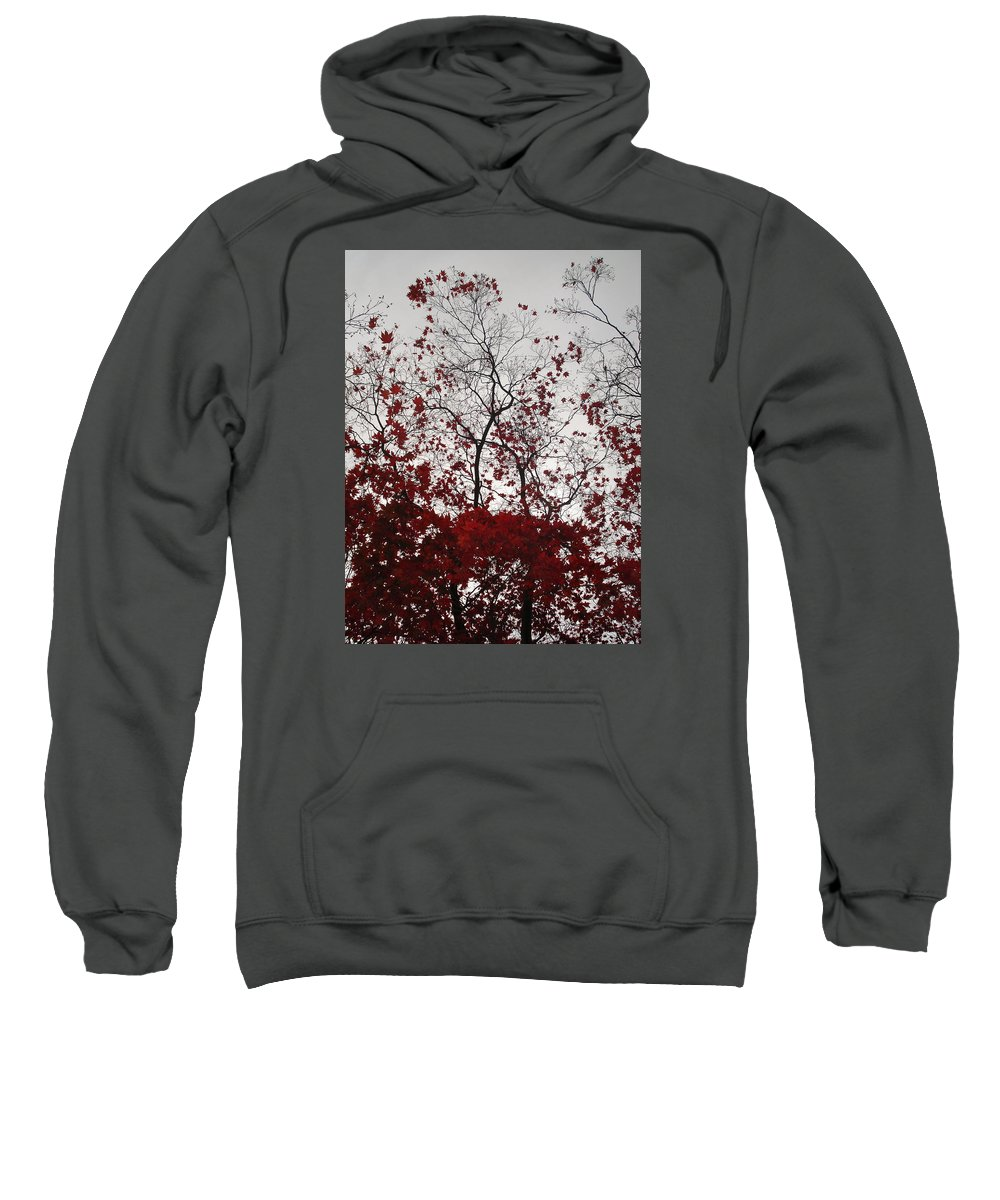 Nature Sweatshirt featuring the photograph Red Glitter by Nelson F Martinez
