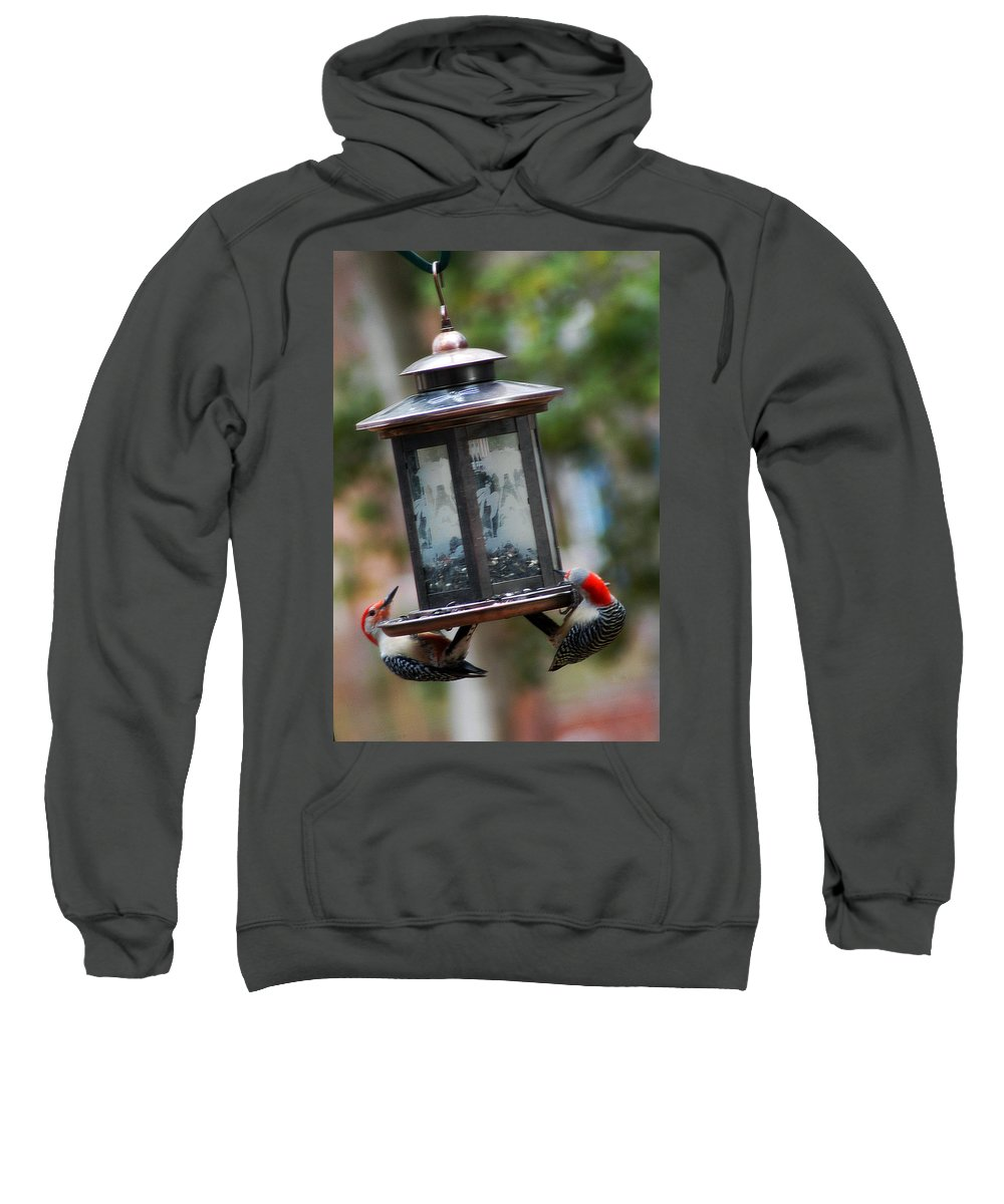 Clay Sweatshirt featuring the photograph Red Head Wood Peckers On Feeder by Clayton Bruster