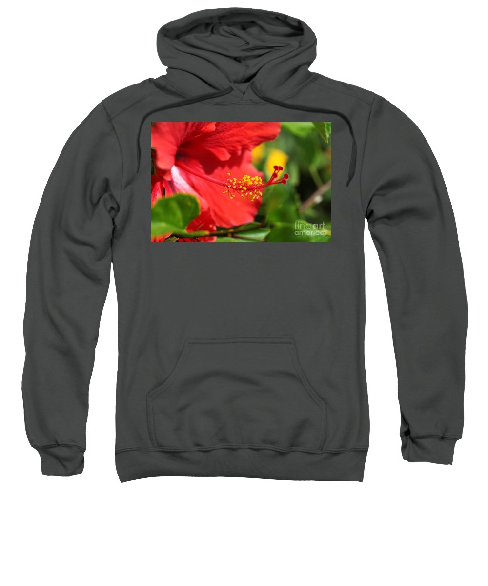 Flowers Sweatshirt featuring the photograph Red Hibiscus And Green by Nadine Rippelmeyer