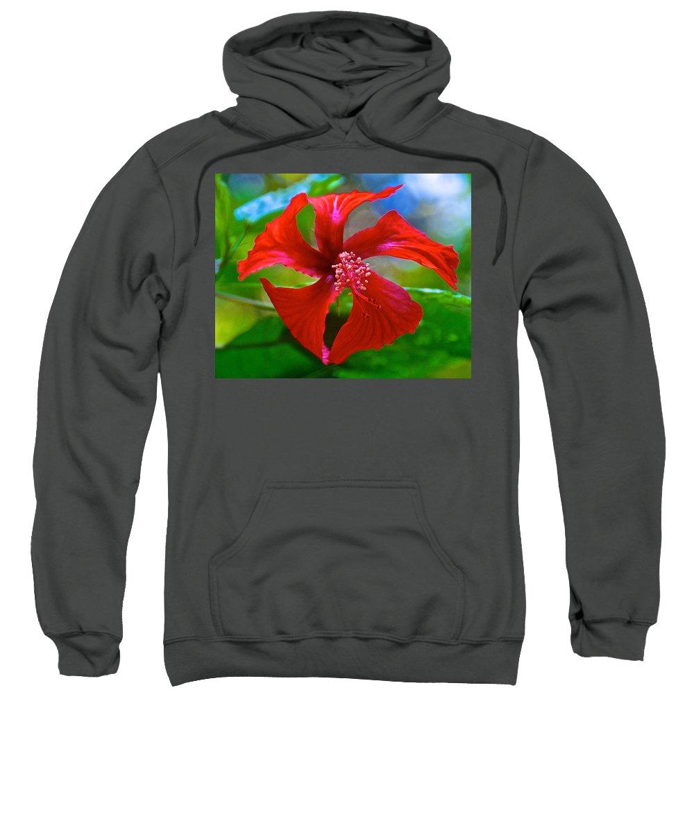 Red Hyacinth In Bourbon Resort Gardens Near Iguazu Falls National Park Sweatshirt featuring the photograph Red Hyacinth In Bourbon Resort Gardens Near Iguazu Falls National Park-brazil by Ruth Hager