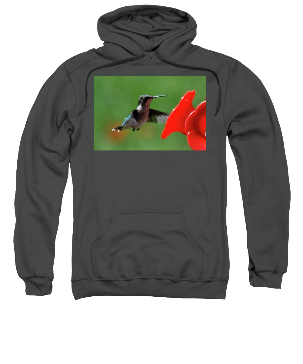 Hummingbird Sweatshirt featuring the photograph Red Is My Favorite Color by Lori Tambakis