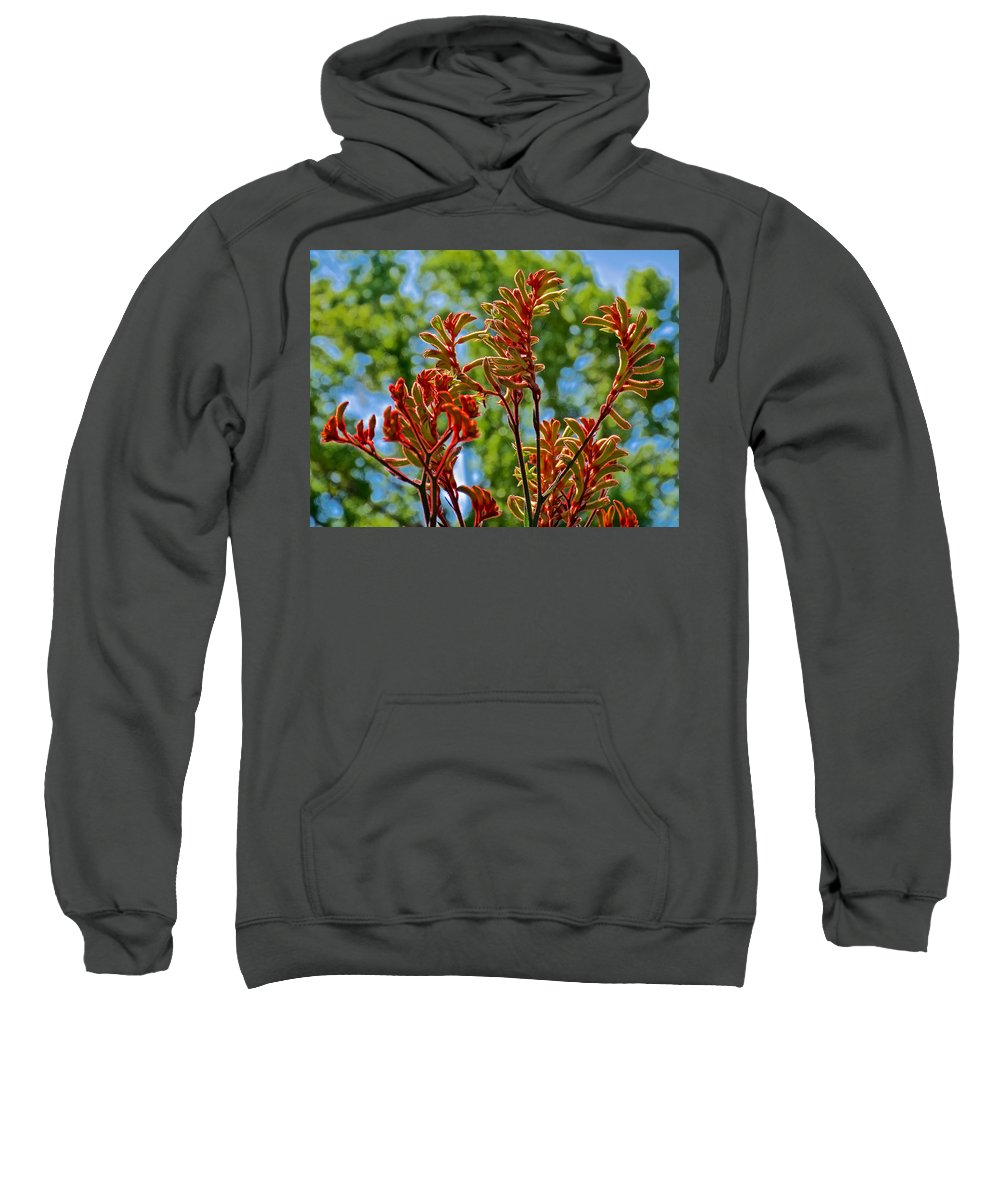 Red Kangaroo Paws At Pilgrim Place In Claremont Sweatshirt featuring the photograph Red Kangaroo Paws At Pilgrim Place In Claremont-california- by Ruth Hager