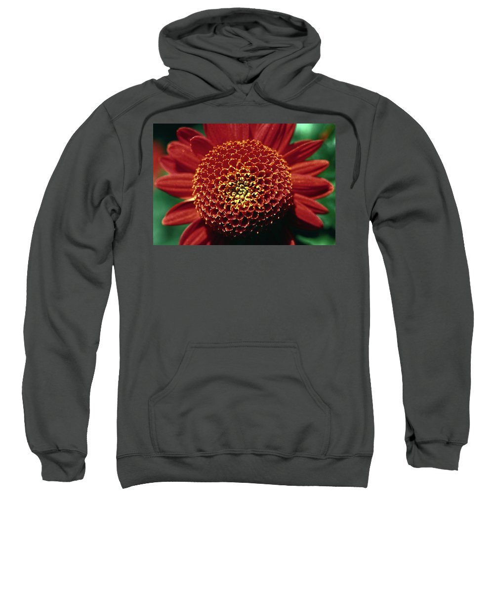 Red Mum Center; Close-up Sweatshirt featuring the photograph Red Mum Center by Sally Weigand