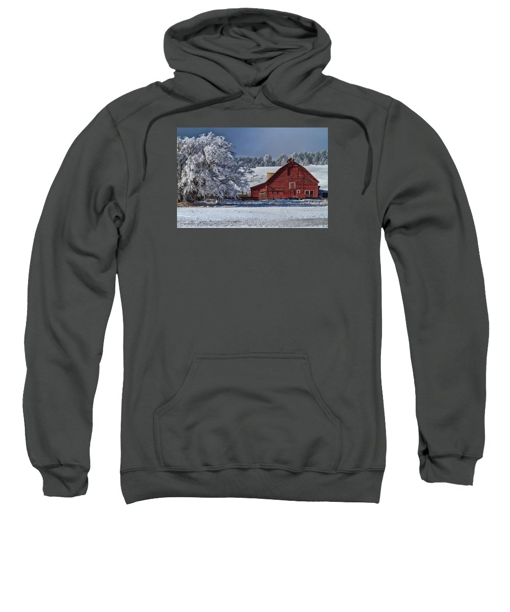Winter Sweatshirt featuring the photograph Red On White by Alana Thrower