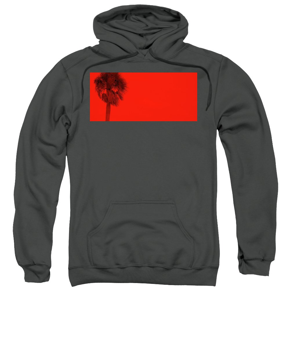 Landscape Sweatshirt featuring the photograph Red Palm by Edward Smith