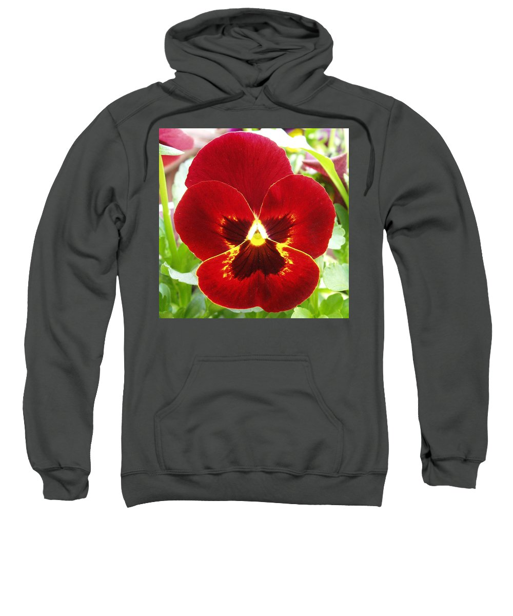 Red Sweatshirt featuring the photograph Red Pansy by Nancy Mueller
