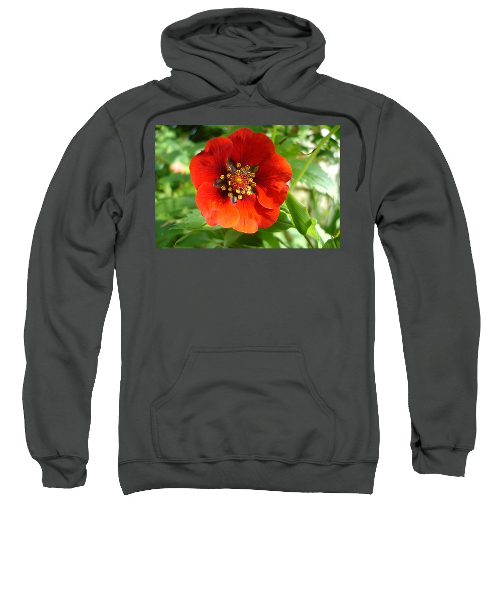 Flora Sweatshirt featuring the photograph Red Red Bloom by Susan Baker