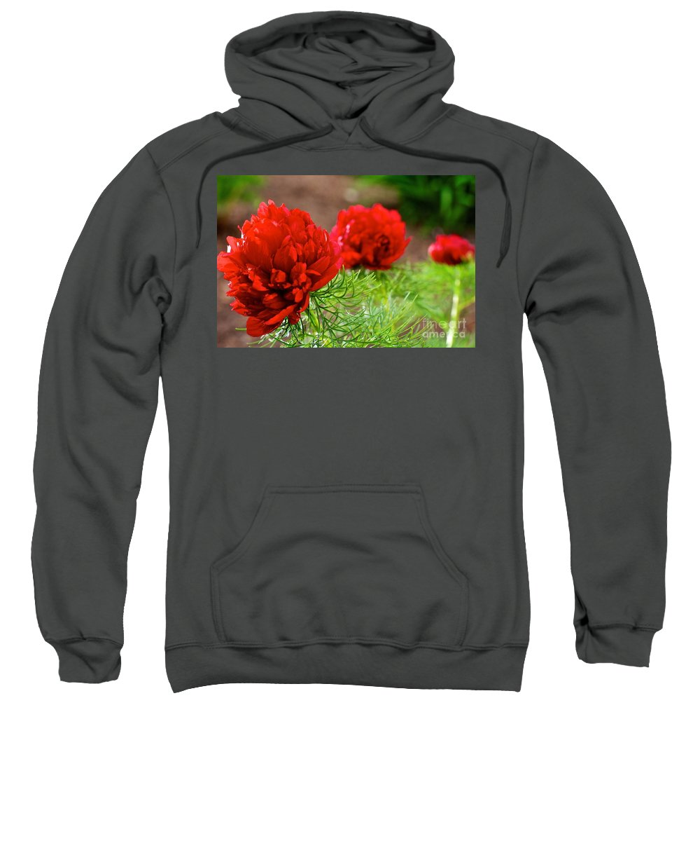 Flower Sweatshirt featuring the photograph Red Remembrance by DJ MacIsaac