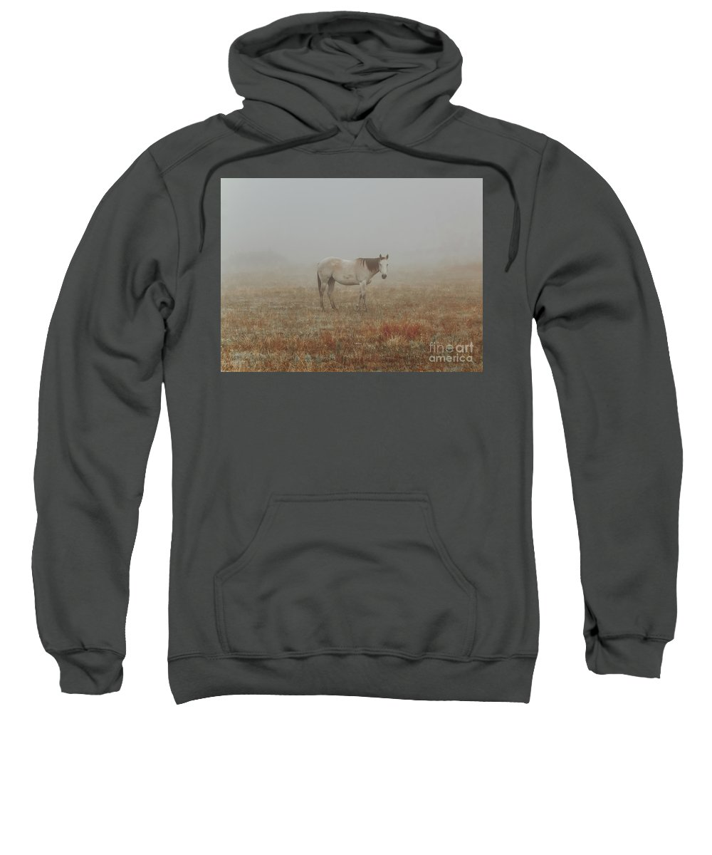 Horse Sweatshirt featuring the photograph Red Roan In Mist by Robert Frederick
