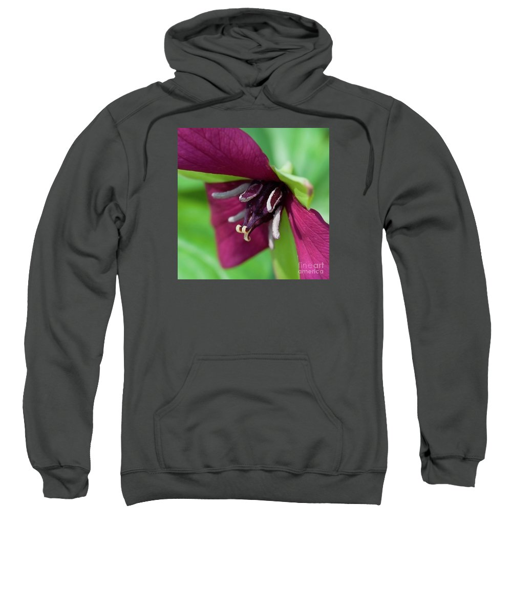 Festblues Sweatshirt featuring the photograph Red Trillium.. by Nina Stavlund