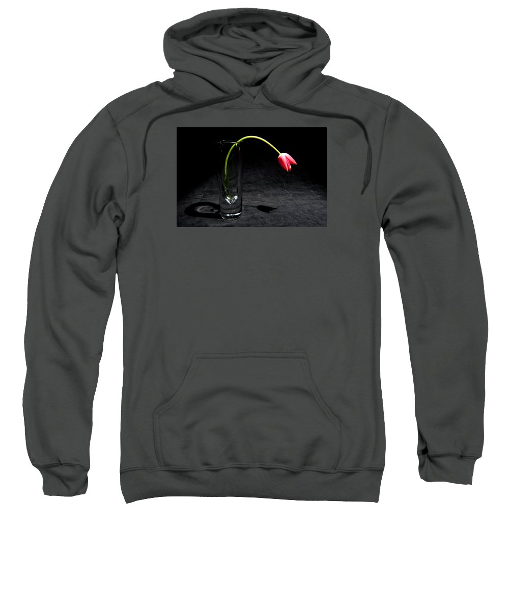 Black Sweatshirt featuring the photograph Red Tulip On Black by Helen Northcott