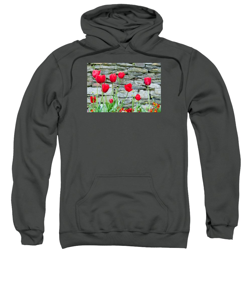 Red Sweatshirt featuring the photograph Red Tulips by Helen Northcott