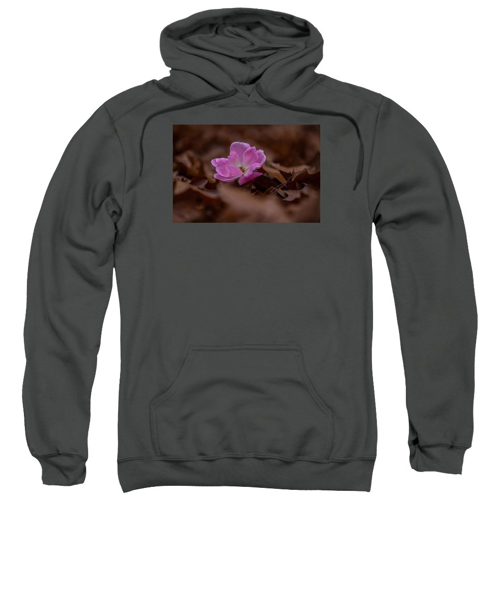 Leaves Sweatshirt featuring the photograph Remnants Of Summer by Natalie Grygo