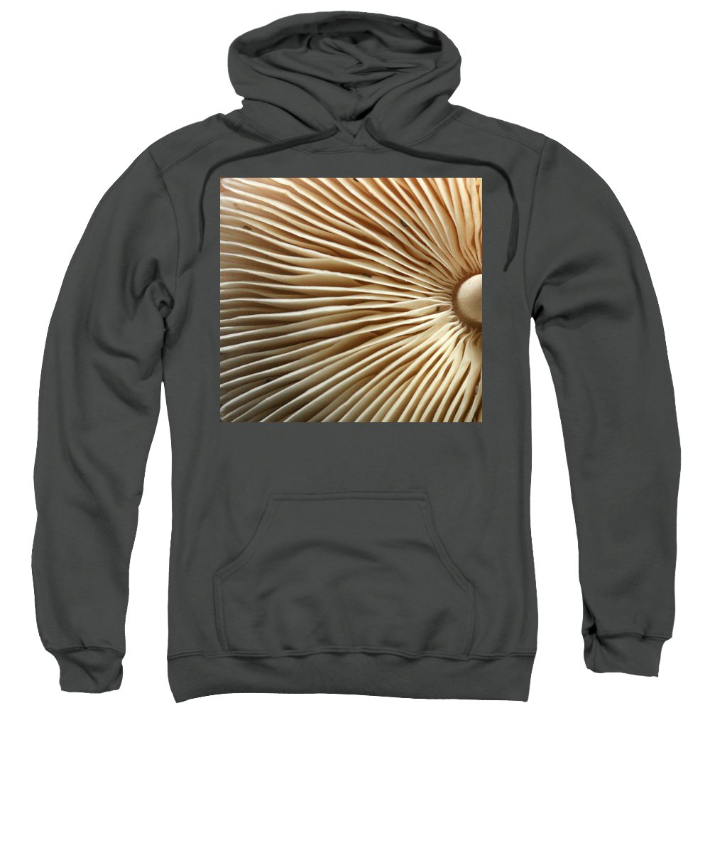 Mushrooms Sweatshirt featuring the photograph Repetishroomin by Jennifer Bright