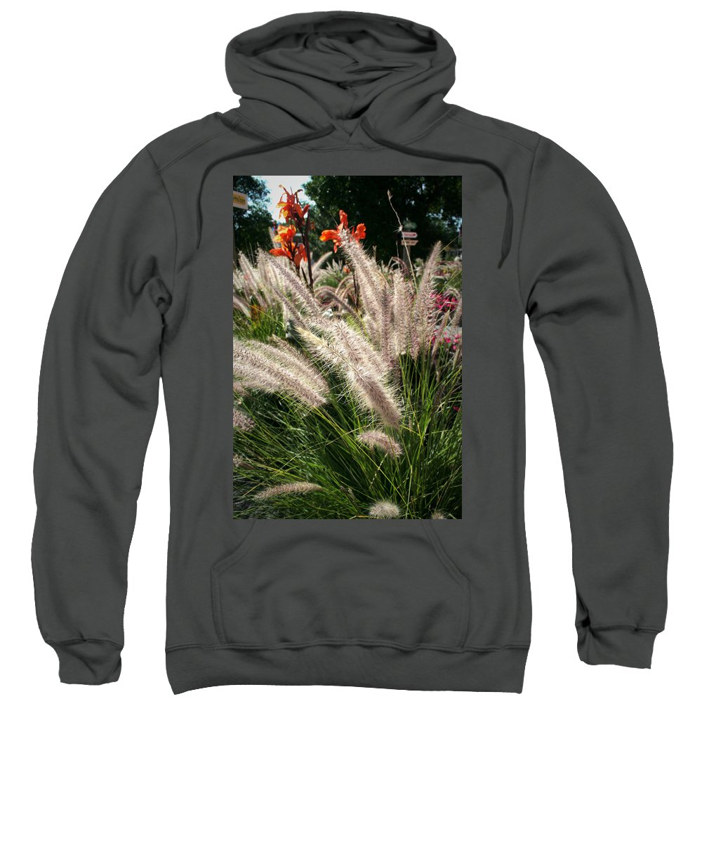 Mount Rushmore Sweatshirt featuring the photograph Reptile Garden Plantsi by Mike Oistad