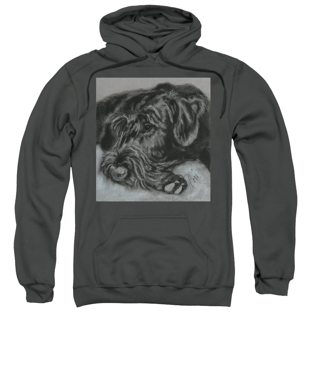 Dog Sweatshirt featuring the drawing Restful Thoughts by Cori Solomon