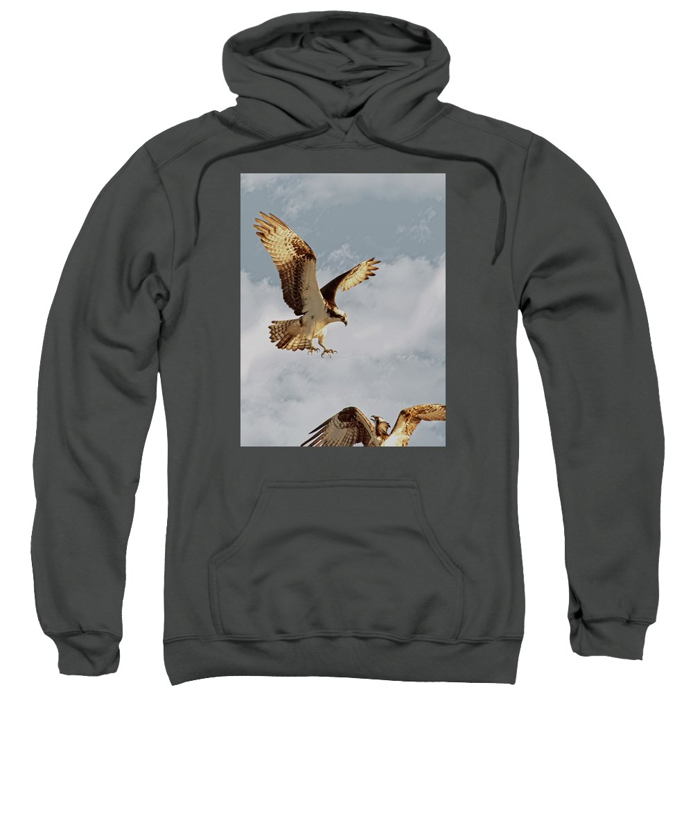 Sweatshirt featuring the photograph Returning To The Nest 01 by Robert Hayes
