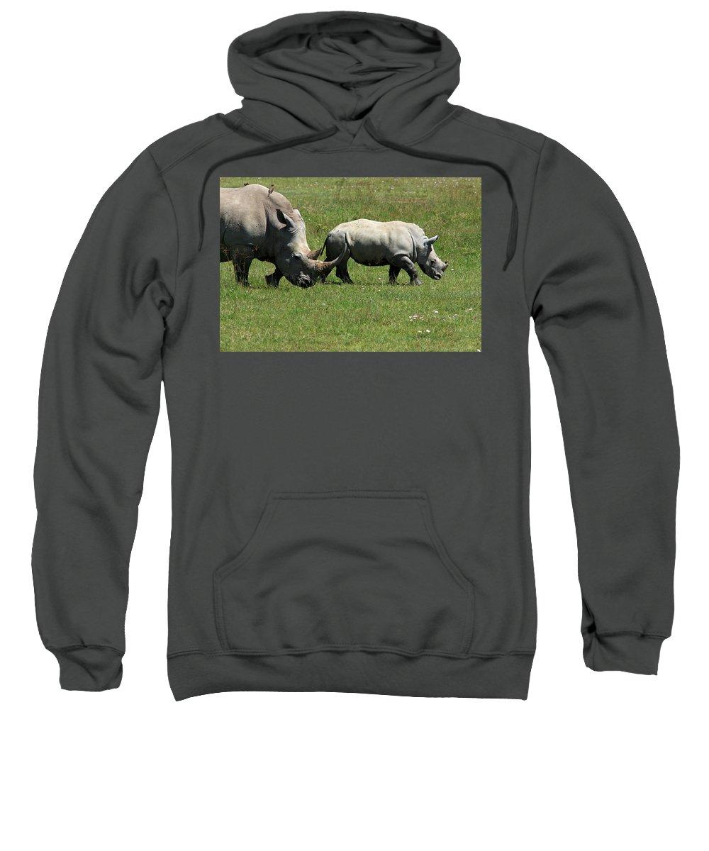 Rhino Sweatshirt featuring the photograph Rhino Mother And Calf - Kenya by Aidan Moran