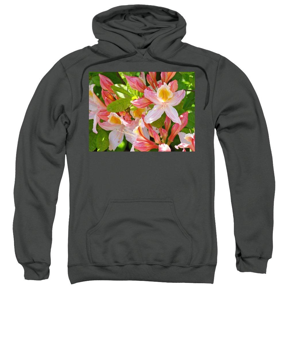 Rhodies Sweatshirt featuring the photograph Rhodies Pink Orange Yellow Summer Rhododendron Floral Baslee Troutman by Baslee Troutman