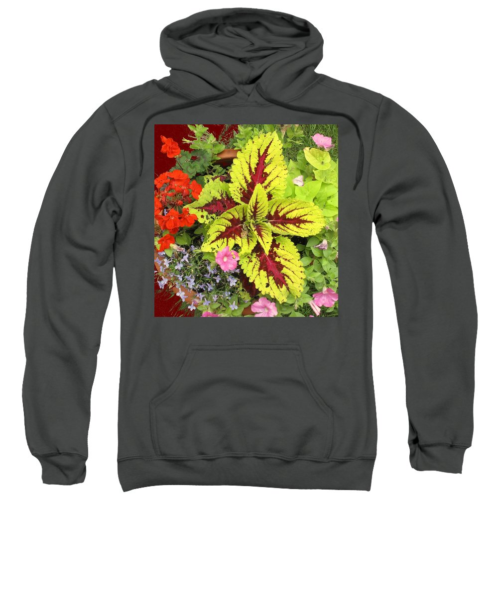 Flowers Sweatshirt featuring the photograph Rich Pattern by Ian MacDonald