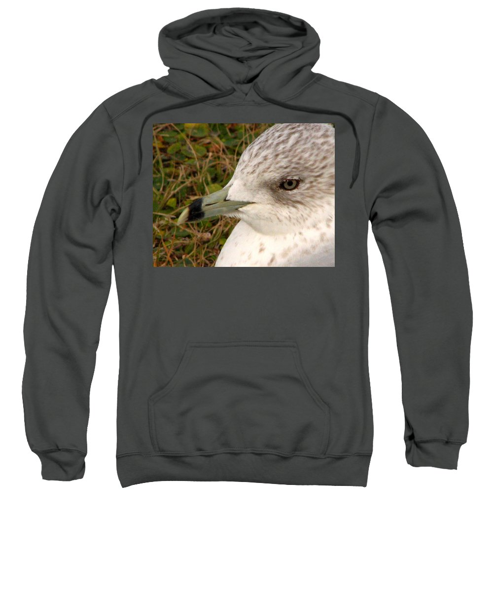 Gull Sweatshirt featuring the photograph Ring Billed Gull Profile by J M Farris Photography