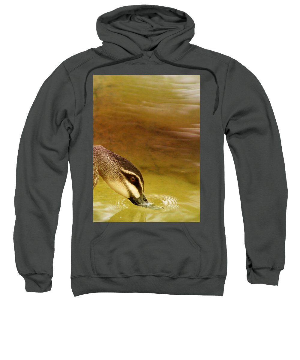 Animals Sweatshirt featuring the photograph Ripples by Holly Kempe