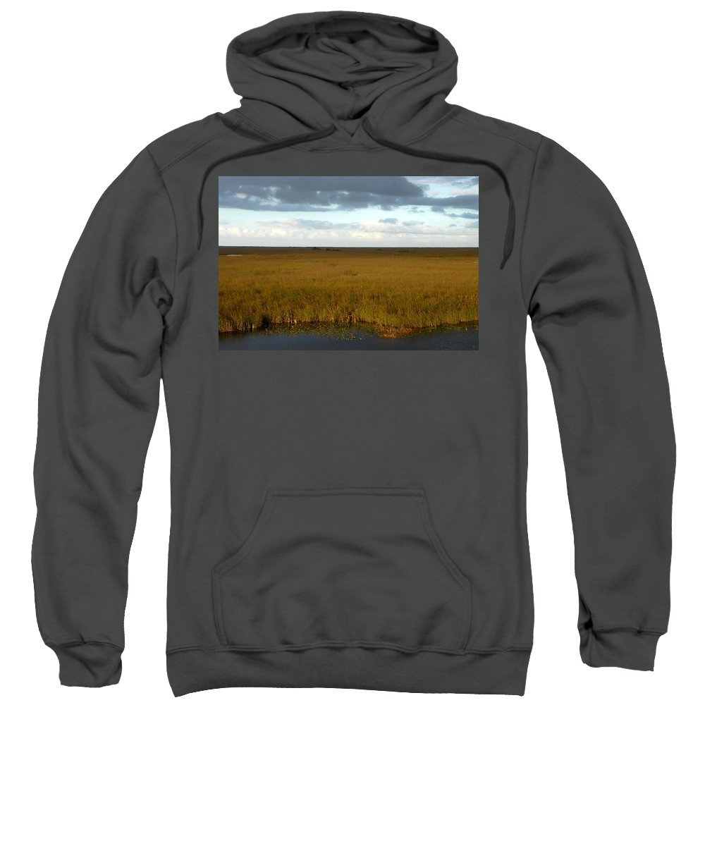 River Of Grass Sweatshirt featuring the painting River Of Grass by David Lee Thompson